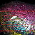 Les sept (7) éponges multicolores du sorcier agbon