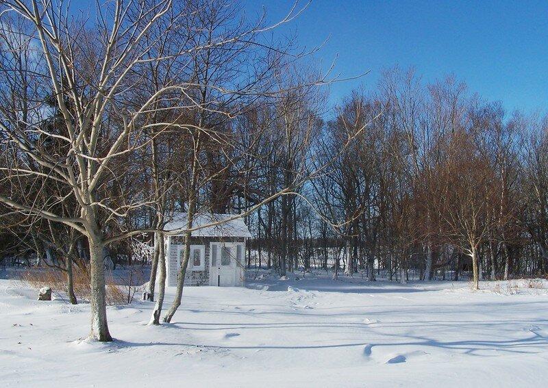 jardin d 39 hiver photo de notre maison au canada tama zaza bambini. Black Bedroom Furniture Sets. Home Design Ideas
