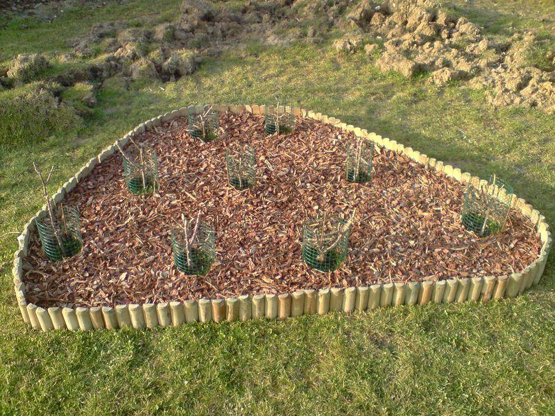boutures de rosiers petite histoire mon jardin mois. Black Bedroom Furniture Sets. Home Design Ideas