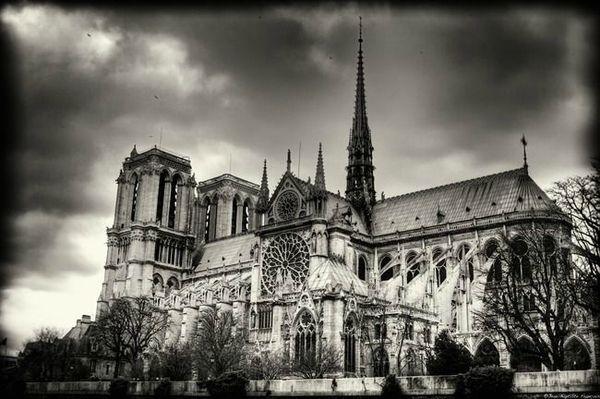 notre-dame-de-paris-architecture-c19540T650