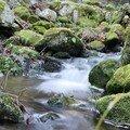 2008 04 20 L'eau qui coule de source