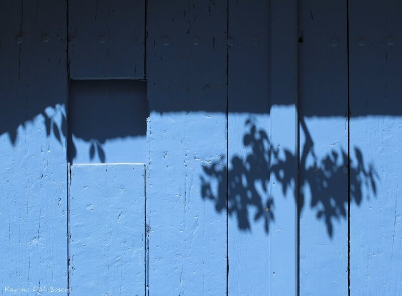 ombres bleues blog