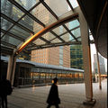 03-Walkin-Shiodome