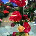 Saint Valentin Anthurium rouge