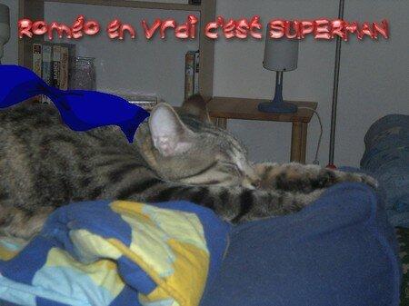 20070526___SUPERMAN