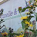 Commandez vos plants de plantes médicinales!!!