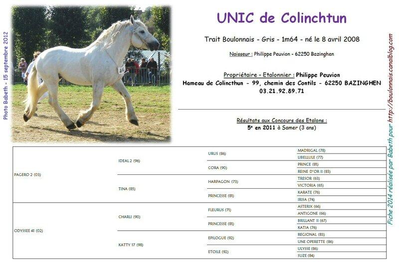 Fiche UNIC DE COLINCHTUN 2014