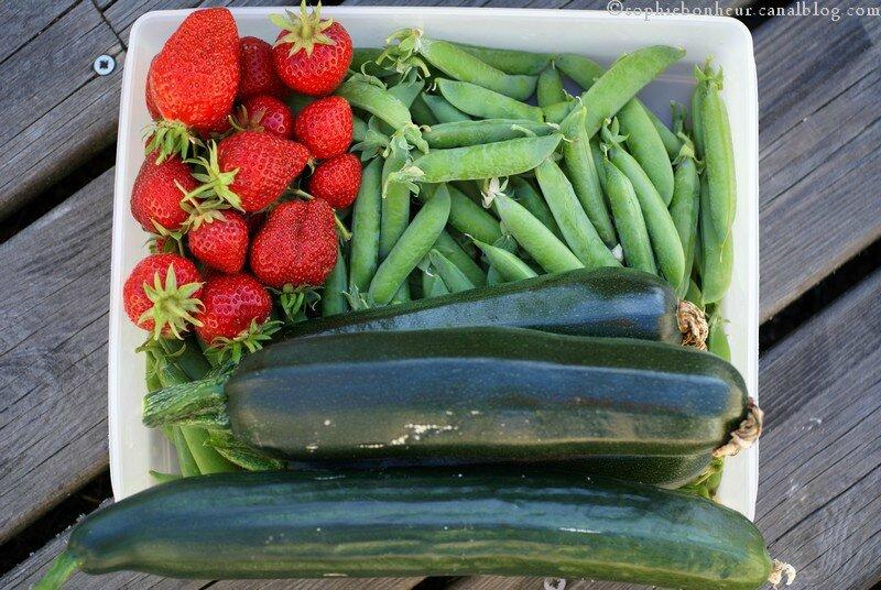 MM légumes
