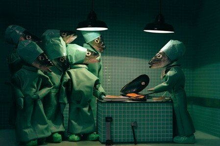anat_dissection