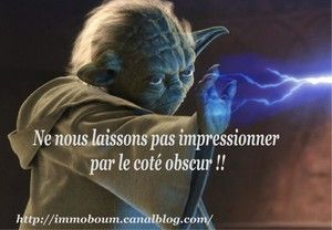 t_yoda_immoboum3