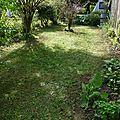 235 - chamboulement au jardin