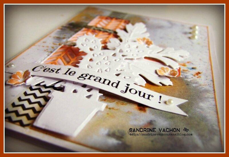 Sandrine VACHON 5 juin (4)
