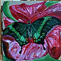 Papillo palinurus sur fleur à hunawihr
