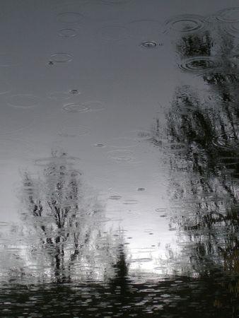 L'étang de pluie
