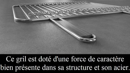 Une_force_de_caract_re