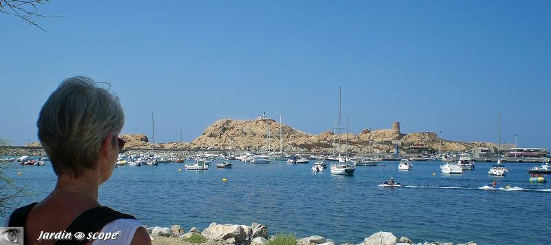 L'ile Rousse - Le Port