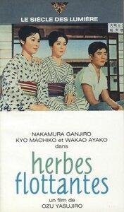 CanalBlog Cinéma Ozu K717 Herbes Flottantes02