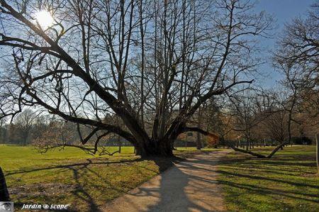 Parc-Cheverny