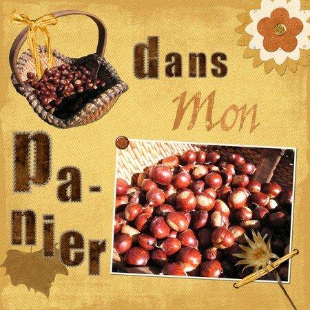 Dans_mon_panier_F