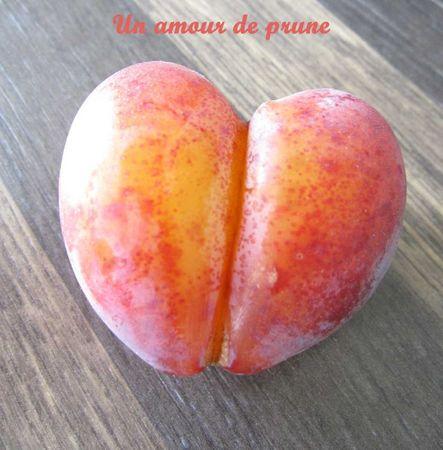 un--amour-de-prune