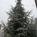 De la neige ...