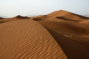 2_sahara1___Copie