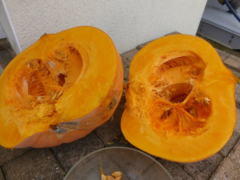 6-courge (4)