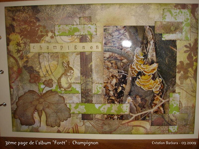 album foret_03_champignon_01