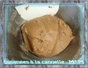 Losanges___la_cannelle_1