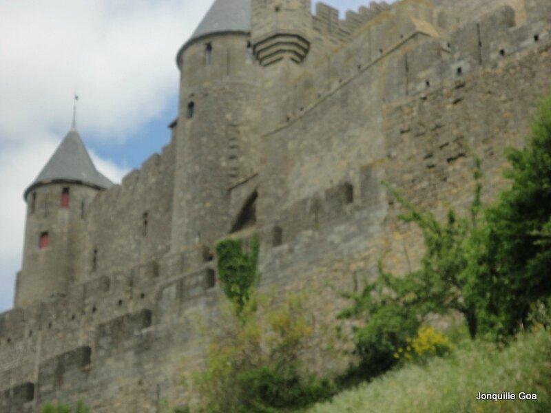 Carcassonne La Cité (23)