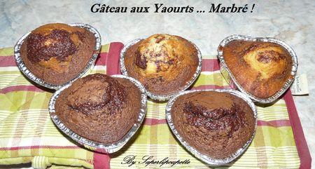 Gâteau aux Yaourts Marbré