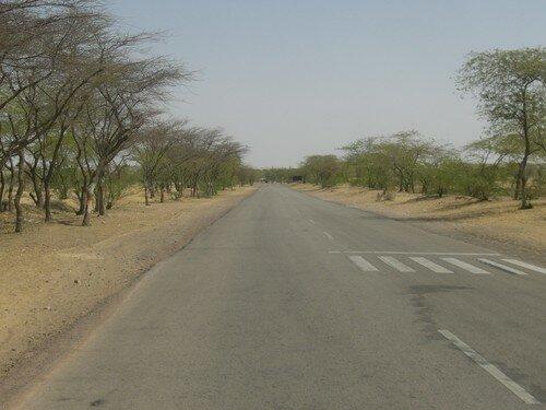 Sur la route, entre Jodhpur et Jaisalmer