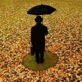 J'aime pas l'automne !