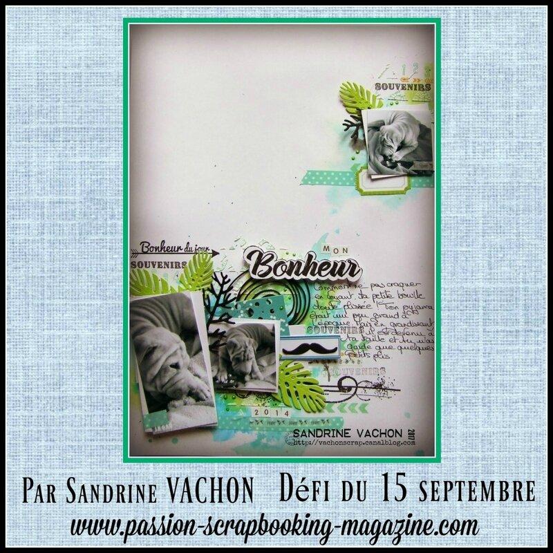 Sandrine VACHON défi du 15 sept Blog PS (1)