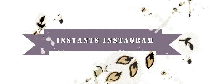 etiquette instants-instagram-feuillages