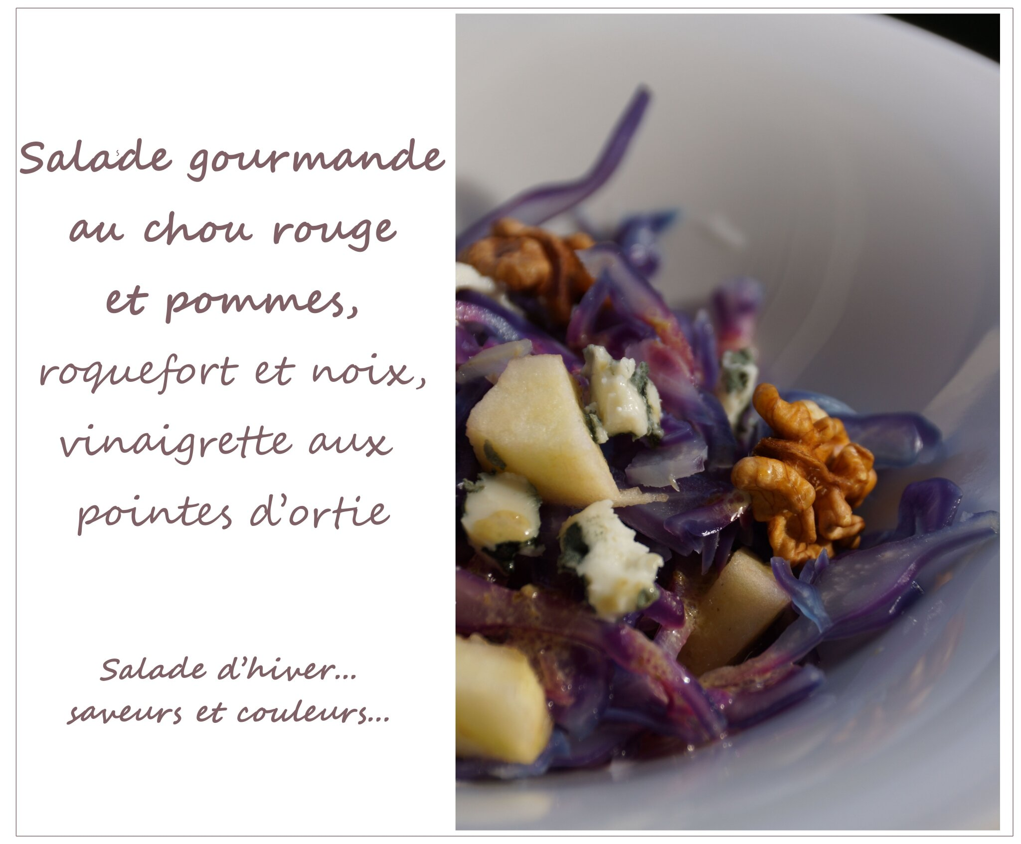 salade de chou rouge 2