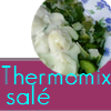 Thermomixsal_