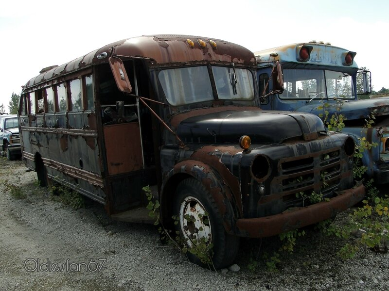 dodge-b-school-bus-1950-a