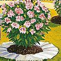 Comment réussir ses azalées et rhododendrons en terre calcaire ?