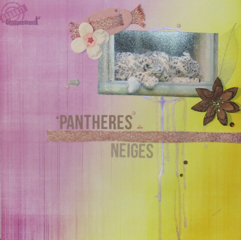 2013-pantheres-neiges