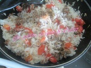 Wok de riz bolognaise25