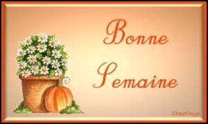 bonne001