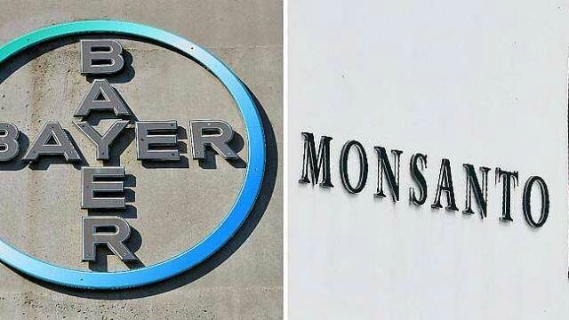 bayer-retarde-la-finalisation-du-rachat-de-monsanto