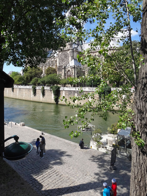 Seine_TX10__3_