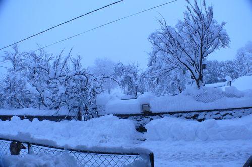 2008 12 15 Dans la cour enneigée