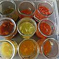22 juillet - graines de tomates.....le meilleur à semer