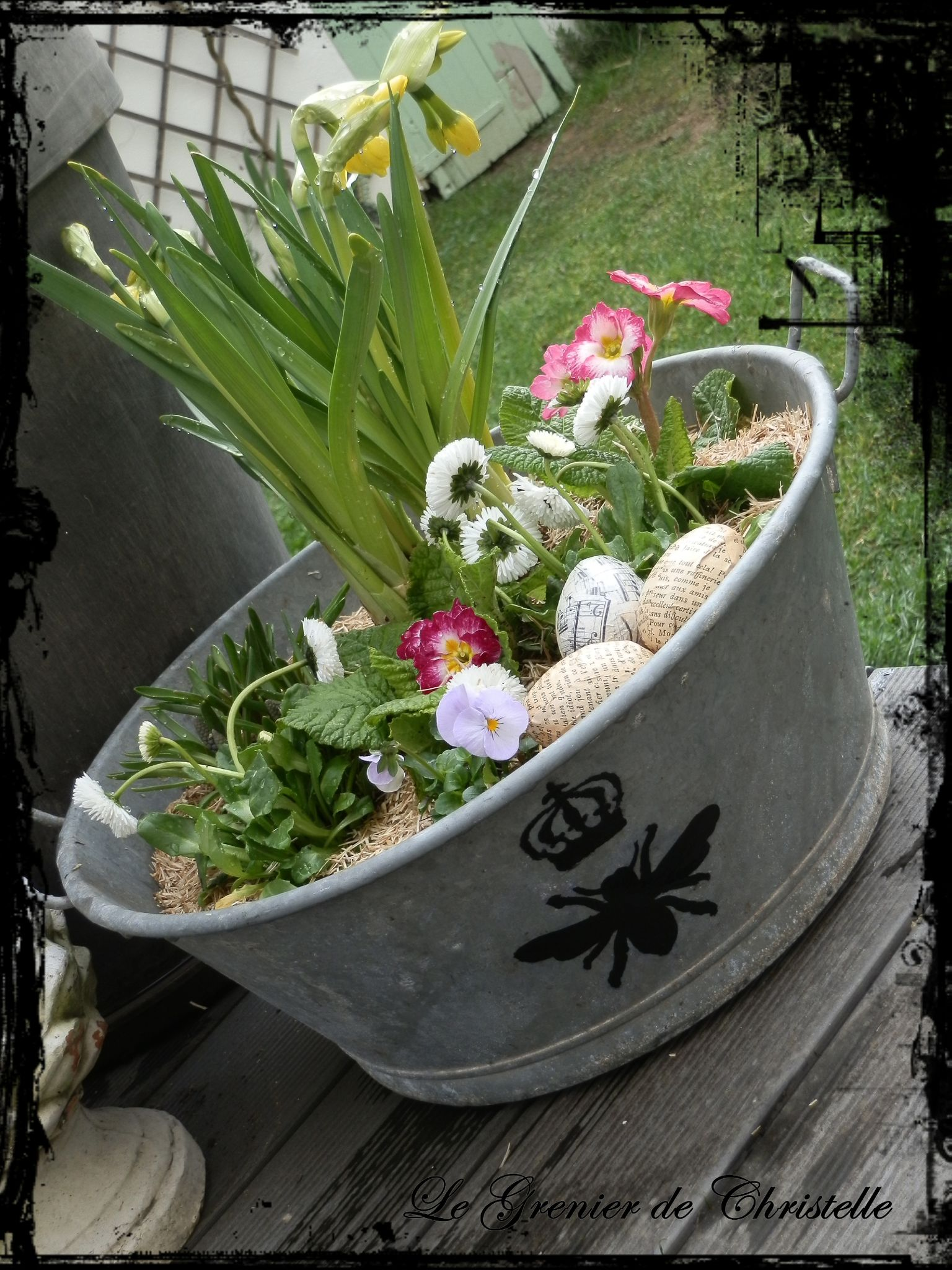 planter fleurs bassine zinc id e d 39 image de fleur. Black Bedroom Furniture Sets. Home Design Ideas