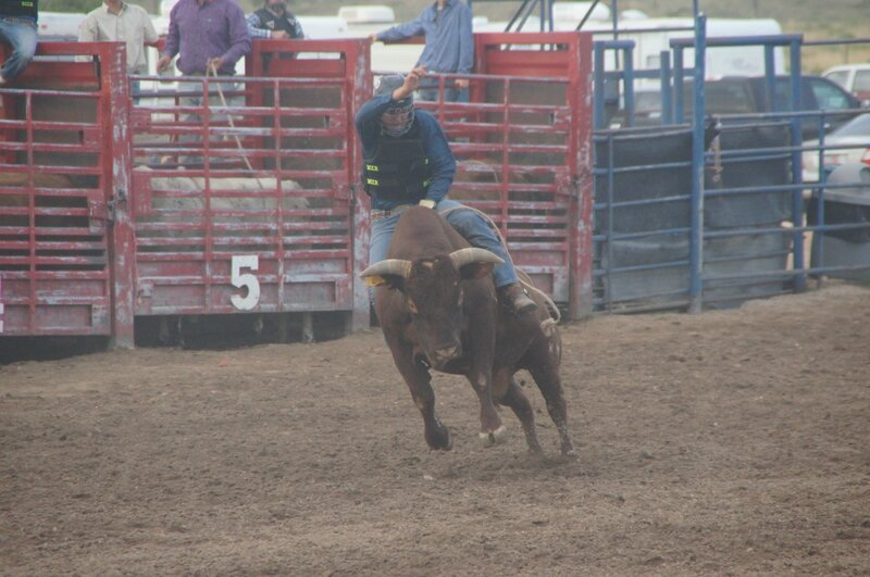 Rodeo (15)