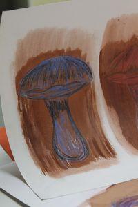 champignon_41