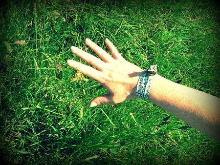 effleurer l'herbe
